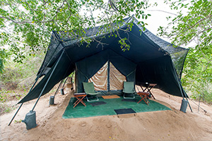 Leopard-Trails-Wilpattu-Camp-1