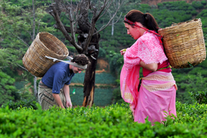 Heritance Tea Factory -2